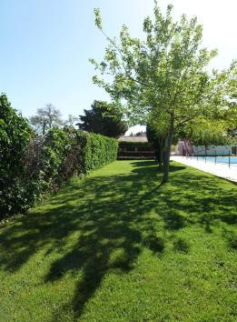 piscina municipal (6)_942x1280