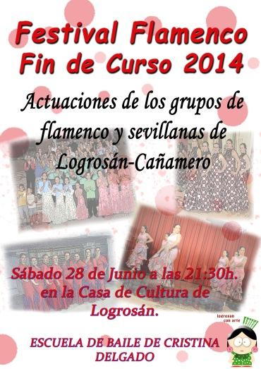 cartel  festival escuela de baile 14