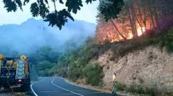 incendio Berzocana
