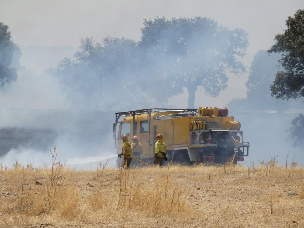ÚLTIMA HORA: La extinción de las llamas se ve muy perjudica por el viento.