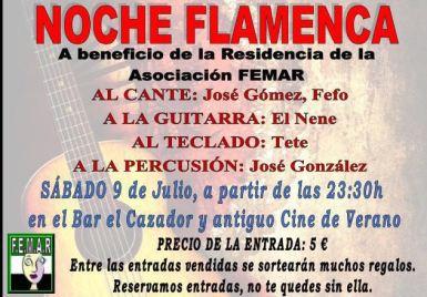 Noche flamenco femar