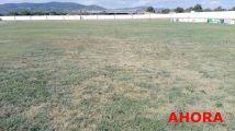 campo fútbol abandono (12)