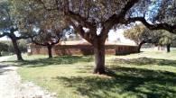 Albergue municipal (3)