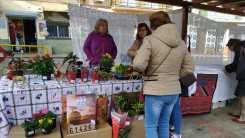Mercado Navideño y 2ªmano (4)